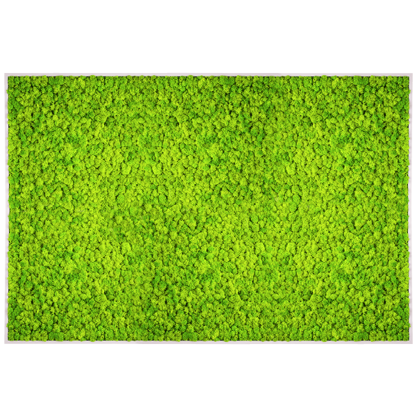 Moosbild soft 80x120 cm GREEN!N | moosbilder.at